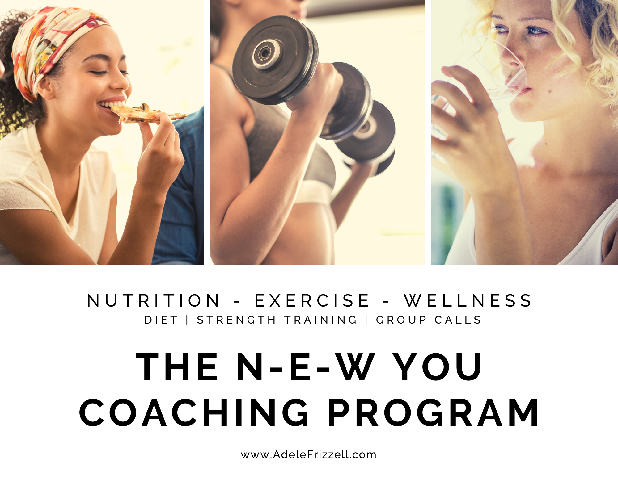 the new you coaching program